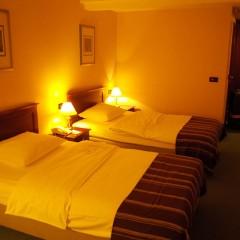 Hotel Dubrovnik ホテル ドゥーブロヴニク