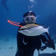 64歳 はじめての体験ダイビング in 沖縄本部
