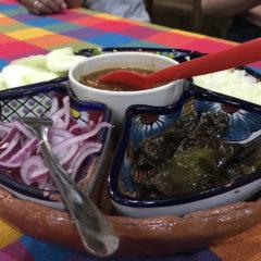 メキシコのラパスでアシカとダイビング タコスパーティー&スーパー編